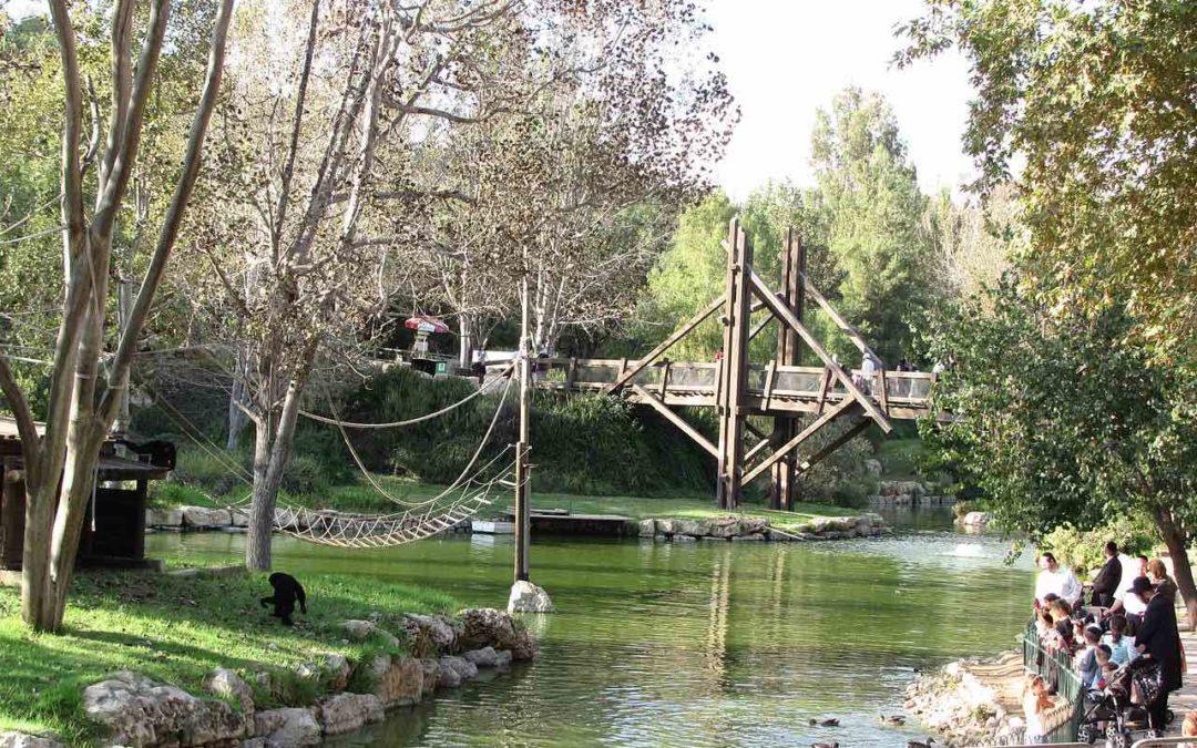jerusalem zoo